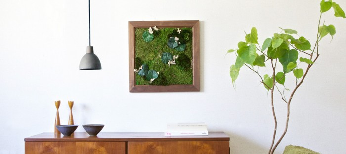 indoor green -2-空間に広がりをもたらす Green wall & Green hanging