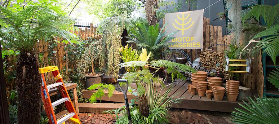 グリーンのある生活  五感に働きかける ガーデンづくりの楽しみ