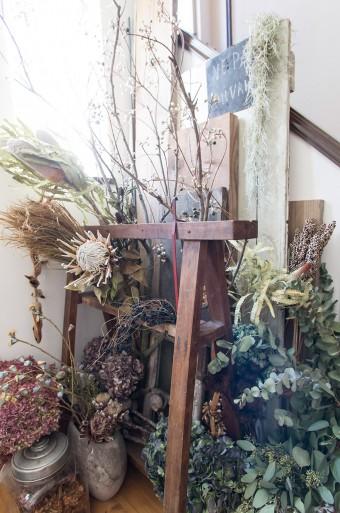玄関をあがると、多種多様な植物が咲き乱れる。