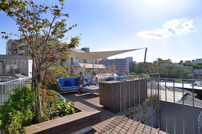 都心の住宅では嘘のように恵まれた屋上空間。緑とともにある開放感が堪らない。