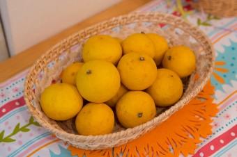 ネットで購入する湘南ゴールド。マーマレ-ドにするなど、お菓子作りに重宝するとか。