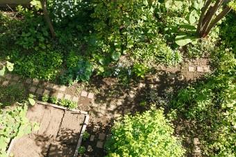 2階のバルコニーから見た庭。一画を畑にしている。