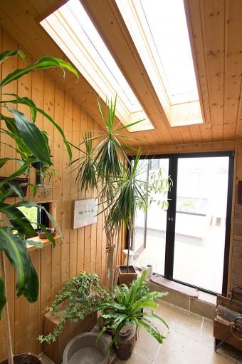 コンサバトリーは、本当は天井をすべてガラス張りにしたかったが、暑さ対策のため、光は抑えて、北向きに設置。