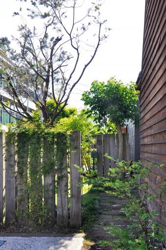 手前の塀の向こう側にケヤキ、奥の塀の手前にはユーカリの木。庭には、ラベンダーやローズマリーなどのハーブ系も多い。