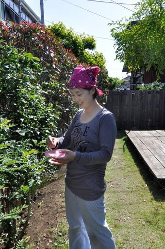 庭でサンショウの葉を摘む奥さん。