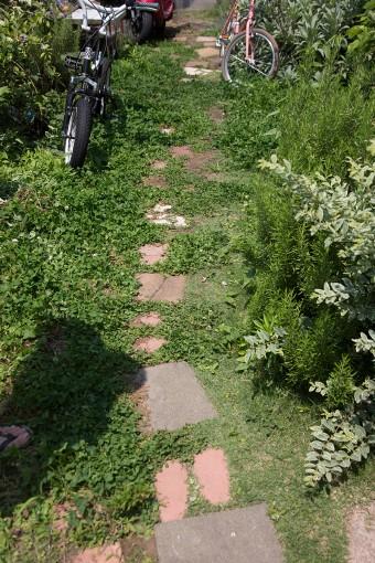 「土にこだわりたくて」、庭も100円のタイルをホームセンターで仕入れ、自分で造成。