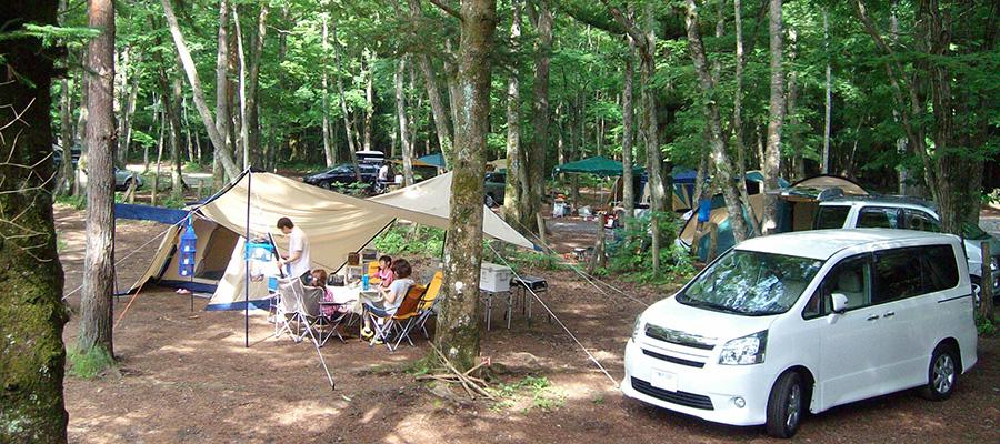 夏のアウトドア-2-  楽々キャンプで休日を遊び尽くす