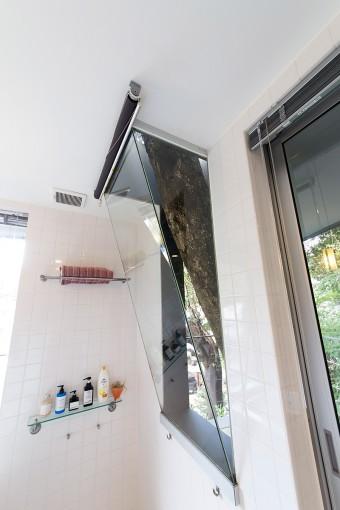 樹の生える方向に合わせて斜めになっているガラス窓から、木肌を眺めながら風呂に浸かれる。リスも遊びに来るそうだ。