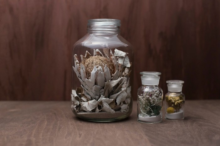 左からテラリウムアレンジ L ¥12,600 M ¥5,250 S¥3,150 以上logo plants&flowers