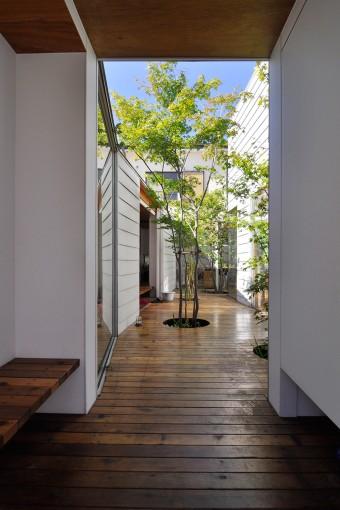 玄関から中庭を見る。左のベンチは靴の脱ぎ履きの時に使う。