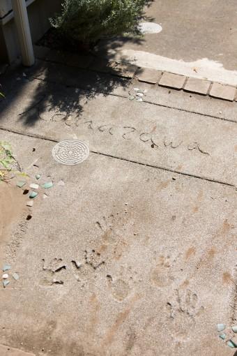 裏口のコンクリートには、子供たちが10年前に手形をつけ、海で拾ってきた貝殻などを埋め込んだ。