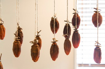 干し柿は、柿がたくさん実った年に、1年に1度だけ「青山ファーマーズマーケット」に出店している。