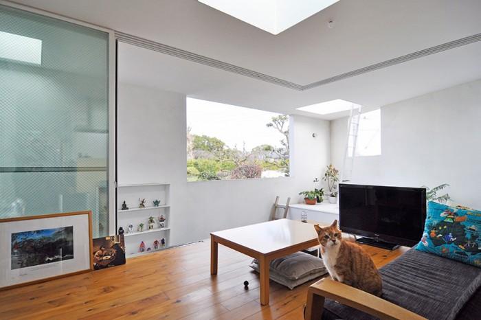正面の開口からは外に広がる牧歌的な風景が満喫できる。外壁の開口部にはガラスが嵌められていないため、土間部分はどこにいてもほとんど外部と言ってもいいような空間になっている。土間は壁に囲まれている分、猫たちには安全で気持ちの良い空間だ。