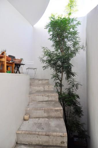 階段の先端部分。手前の部分あたりから急なカーブを描いて2階に至る。