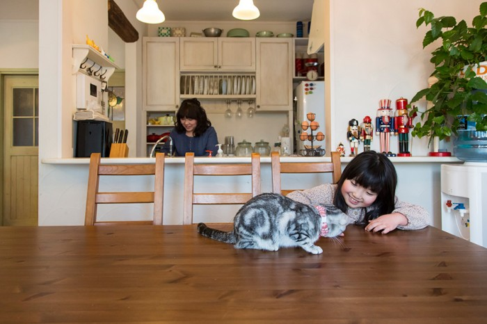 長女・和歌菜ちゃん(8)とアメリカンショートヘアのアメリ。勉強をする時もここで。