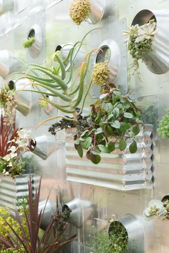 パーティカル・ガーデンには、くぼみの部分に土を入れ、多肉植物など多様な植物を植え込んでいる。