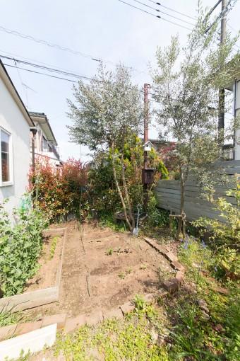 ユーカリ、オリーブの木などが茂る。家庭菜園ではトマト、ナス、キュウリ、サヤインゲンなどを栽培。