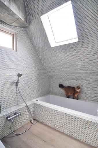 3階浴室には、カラフルな色合いが楽しいモザイクタイル。葉っぱのようで、かつ柔らかい感じのものを選んだという。