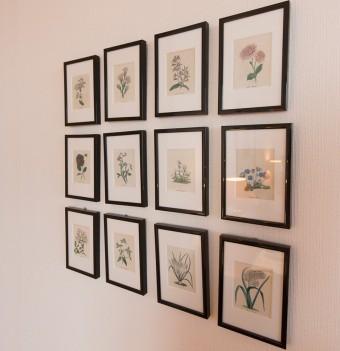 古い植物図鑑を切り抜いて額縁に入れた、ボタニカルアート。1点ずつ眺めるのも面白い。