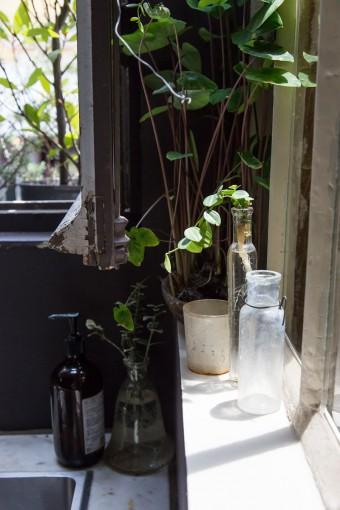 日当たりのよい、キッチンの窓の脇にも植物を。