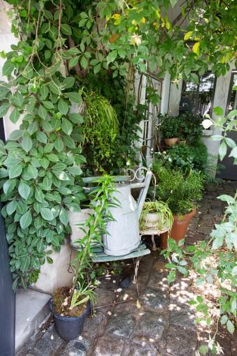 ショップの庭の一角。古びたテラコッタなどが、プロヴァンスの家の庭を思わせる。