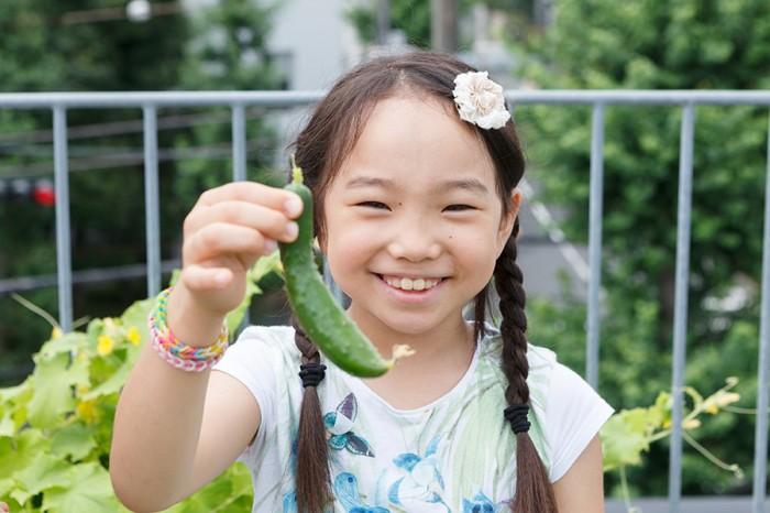 収穫したてのキュウリを手に笑顔のかれんちゃん。