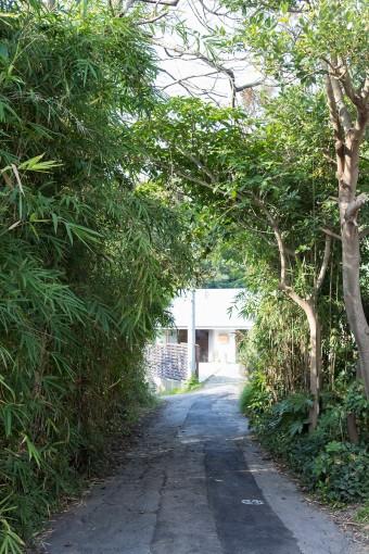 竹などの木々が生い茂る、緑のアーチをくぐったところに立地。周囲は静かな住宅街。