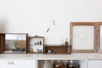 夫が手作りした棚の上は、古道具を使ったディスプレイスペース。多肉植物なども取り入れる。