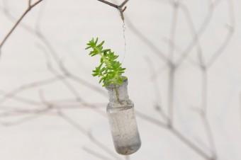 アンティークのガラスの小さな小瓶をアレンジ。