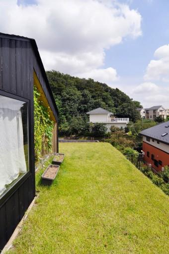 家の脇と背後に豊かな緑が控える。