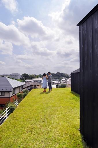 1階の芝生の屋根からは遠くまで望める。普通の家にはない、自由な感じいっぱいの空間だ。