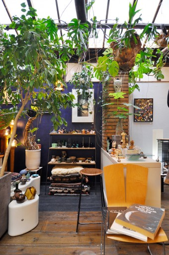 天井を一部改装し、自然光がたっぷり差し込む店内。