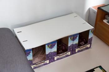 3匹の猫たちのベッド。毎年コストコでかわいい空き箱をもらってきて作成する。下に電気カーペット付きで猫たちも幸せ。