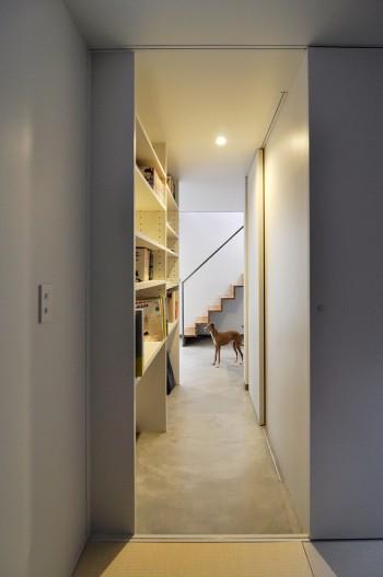 寝室から仕事場のあるスペースを見る。奥に見えるのはイタリアングレイハウンドのクレー。