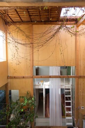 大きな吹き抜けの天井から、ツル植物のテイカズラが下がる。秋には紅葉し、葉が落ちる。室内であることを忘れさせる存在。