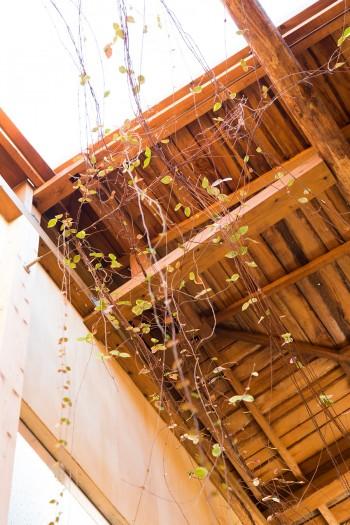 天井には断熱材を入れずに、屋根材をそのまま見せている。「2層分の空気の層が断熱材の代わりをしてくれています」