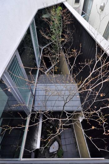 中庭を2階より見下ろす。