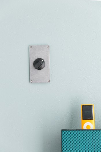重厚なメタリックのスイッチはスラップトーン社製。普通のスイッチだったのを付け替えた。