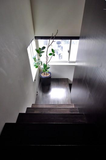 こげ茶色と白の対比が印象的な階段室。
