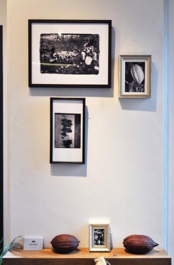 製造を担当するアサヒさんは実際にフィジーなどカカオ産地にも足を運ぶ。収穫の際に撮影した現地の写真が壁面に飾られている。