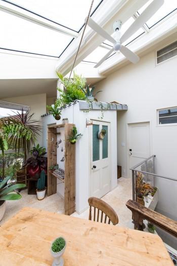 大きな天窓から光が差し込み、植物がすくすくと育つ。小屋の瓦屋根はグレーに塗装。