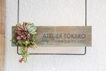 夫婦のユニットによる「季色」。力強い多肉植物の魅力を様々なアレンジで伝える。http://www.tokiiro.com