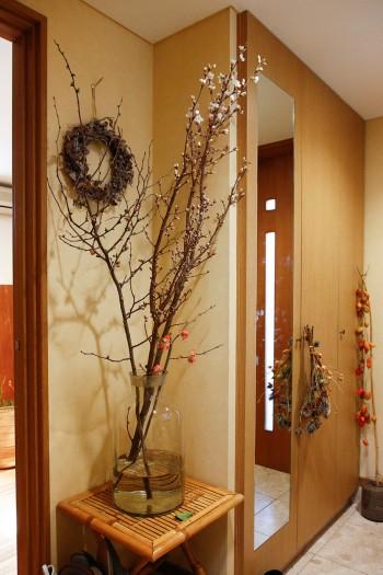玄関に飾られていた桜の木。季節の植物を楽しむ。