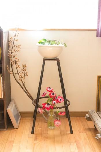 白い鉢は、世田谷のボロ市で買った平清水焼のこね鉢。アネモネの花が美しい。