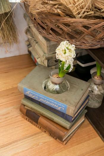 花瓶がすっぽり入るよう繰り抜かれた古本に、ヒヤシンスを。