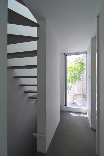 2階奥に設けられたバルコニーにはシフレラが置かれている。