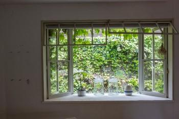 出窓の向こうに広がるのはヘデラ。1年中、グリーンが絵のように楽しめる。