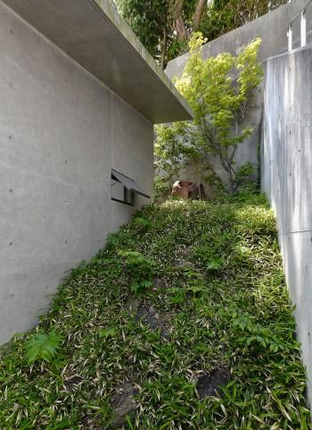玄関右側の庭。松村文平さん(庭相)に依頼し、乱組の石、小熊笹、イロハモミジ、ツバキ、彫刻(藤田昭子作)などを配置した。