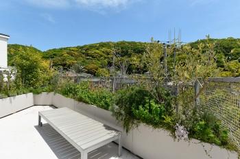 庭が取れなかったため植物はプランターで育てている。レモン、オリーブからハーブ各種まで道路側いっぱいに植えられている。