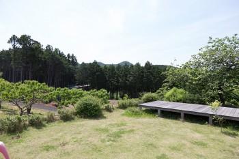 庭からのぞむ景観。やや高台になっているため、川は下の方を流れる。デッキの向こうが桜の木。